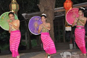 Traditional Lanna dancing at elephant tour