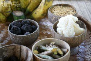 Medicinal foods for elephants