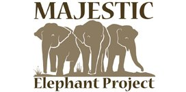 Majestic_Elephant_Project
