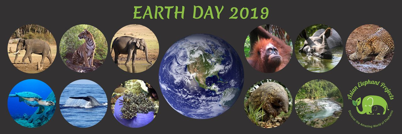 Earth_Day_Asian_Elephant_Projects