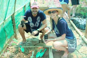 reforestation project at elephant green hill elephant sanctuary chiang mai