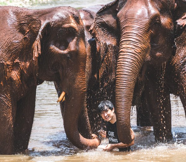Care For Elephants Project Owner