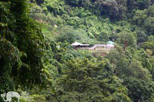 elephant highlands sanctuary