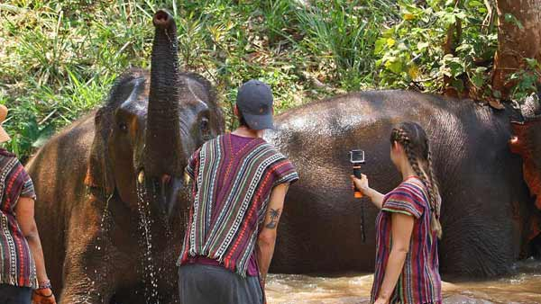 elephant bathing at sanctuary in Chiang Mai Thailand