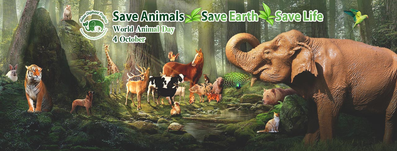 World_Animal_Day_2019