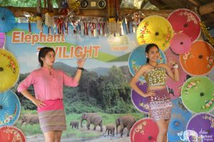 Elephant Twilight traditional Thai dance