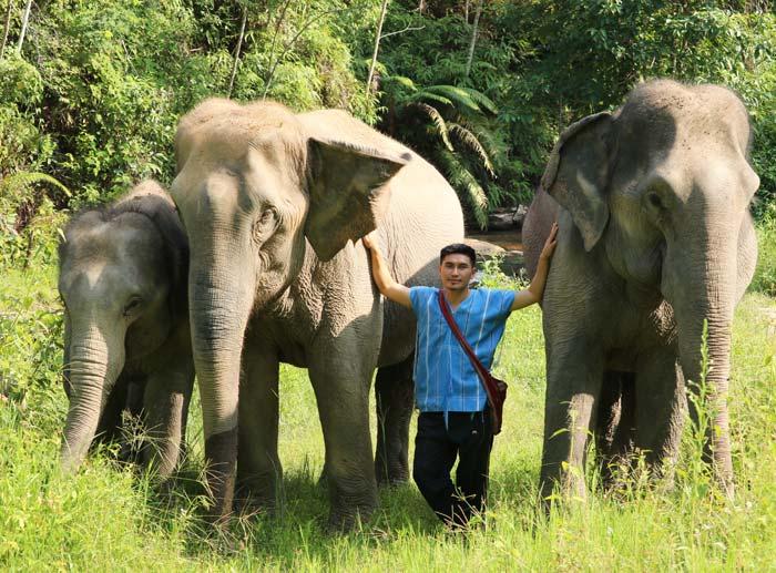 Karen Elephant Habita Owner
