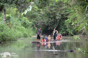 Elephant Freedom bamboo rafting