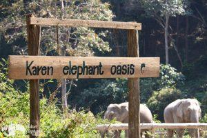 Karen Elephant Oasis ethical elephant tour