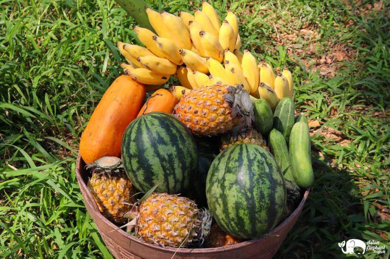 Basket Fruit and Vegetables