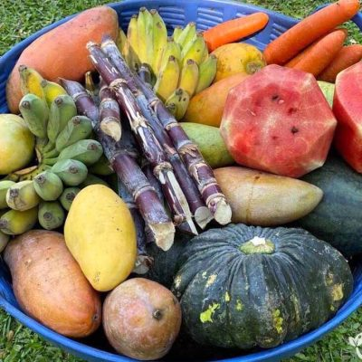 Elephant Food Gift Package - Basket of Fruit & Vegetables