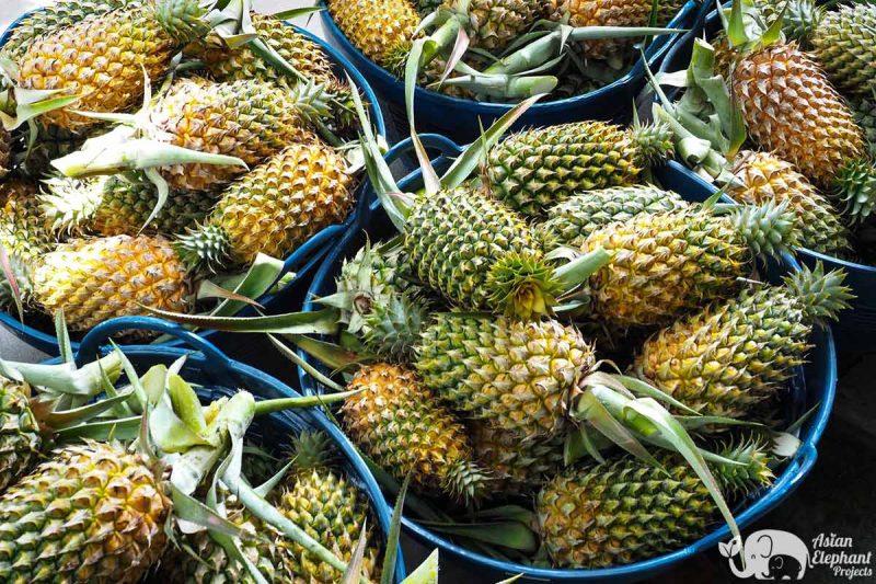 Fruit and Vegetables Baskets