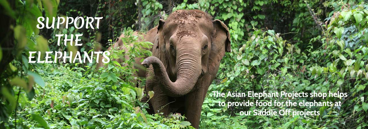 Support the Elephants at Asian Elephant Projects Shop