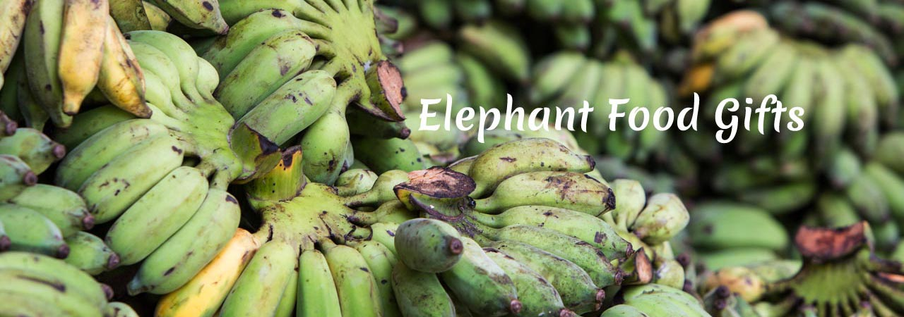 Elephant_Food_Gift_Packages