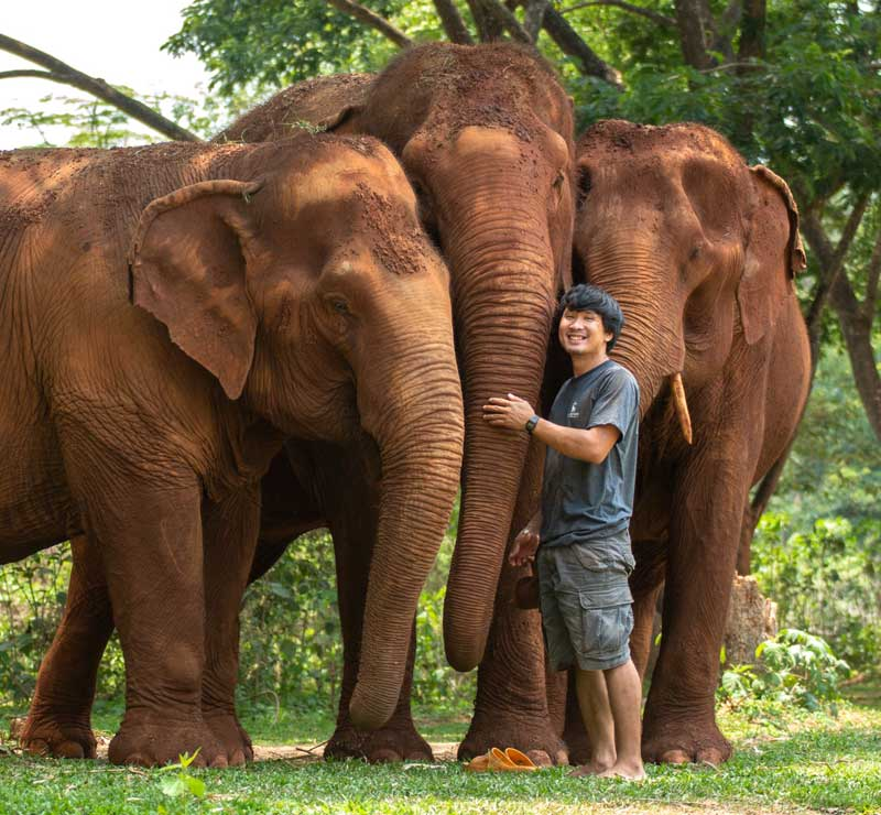 Care_For_Elephants_Owner