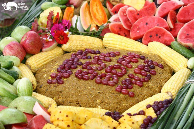 Elephant_Cake_Gift_Large