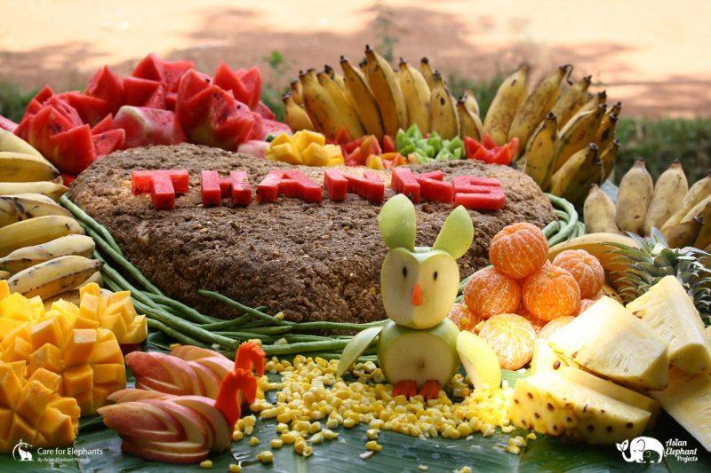 Elephant Fruit Cake Gift Medium