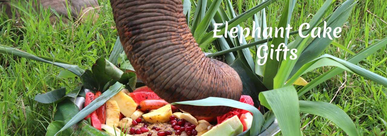 Elephant Gift Cakes