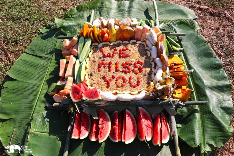 Elephsnt_Fruit_Cake_Cake_HengHeng_Family