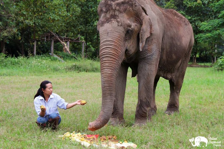 Happy with Muoy at Pamper A Pachyderm