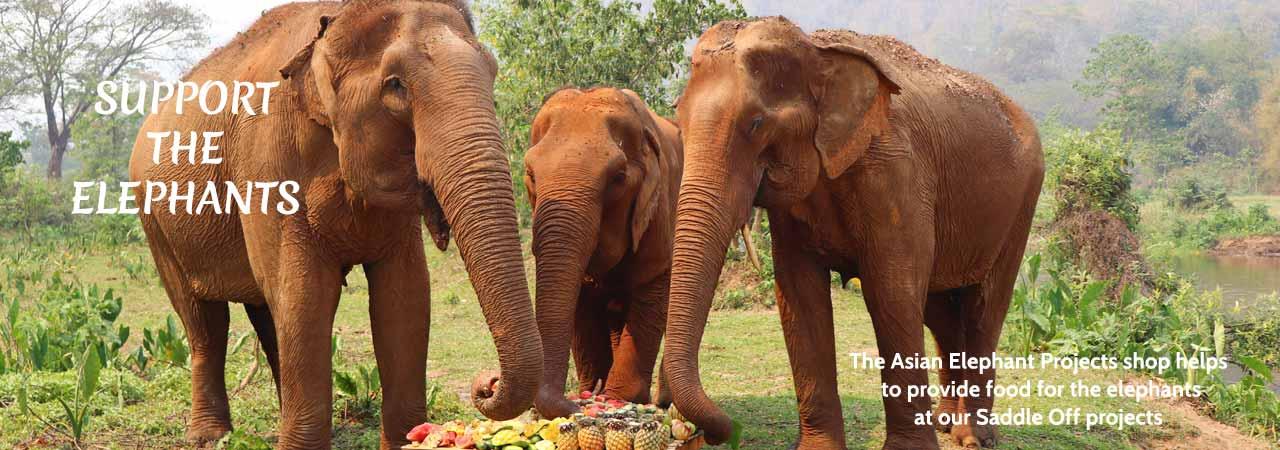 Asian Elephant Projects Shop