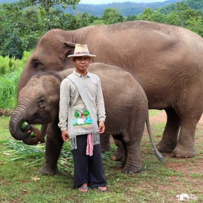 Karen_Elephant_Serenity_Karen Bags08_1