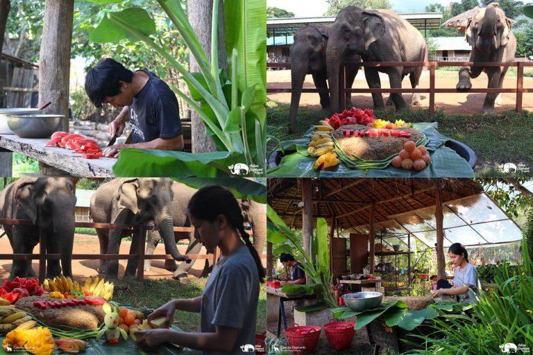 Making_Elephant_Fruit_Cakes_01