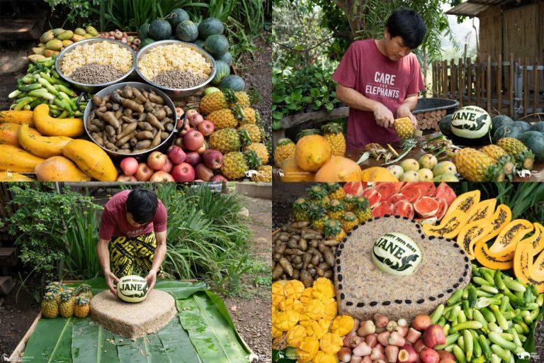 Making_Elephant_Fruit_Cakes_05