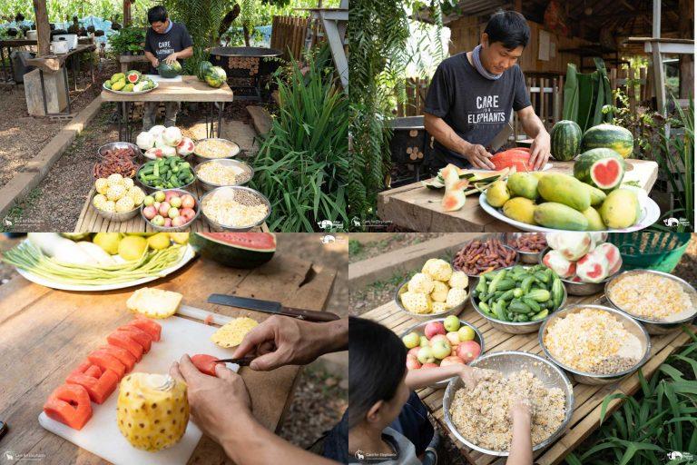 Making_Elephant_Fruit_Cakes_07