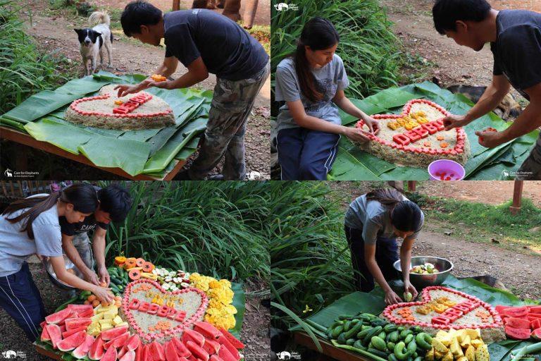 Making_Elephant_Fruit_Cakes_08