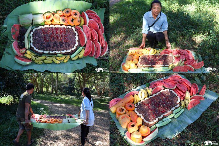 Making_Elephant_Fruit_Cakes_15