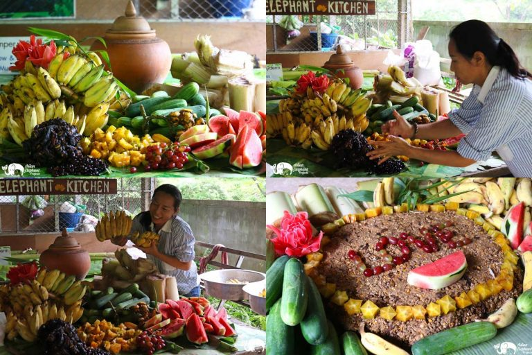 Making_Elephant_Fruit_Cakes_19