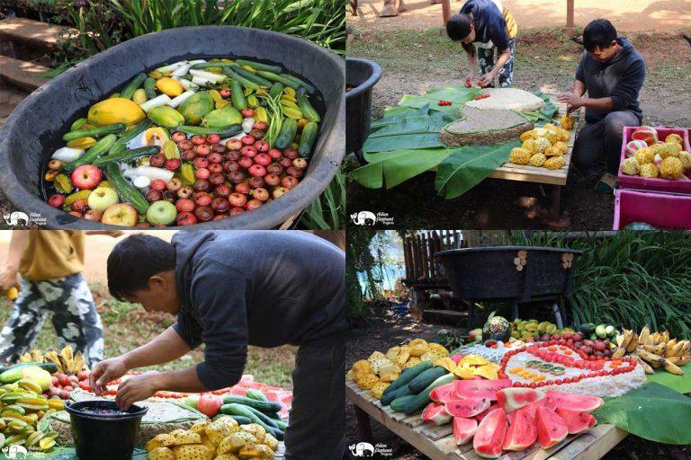 Making_Elephant_Fruit_Cakes_21