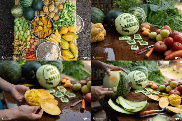 Making_Elephant_Fruit_Cakes_22