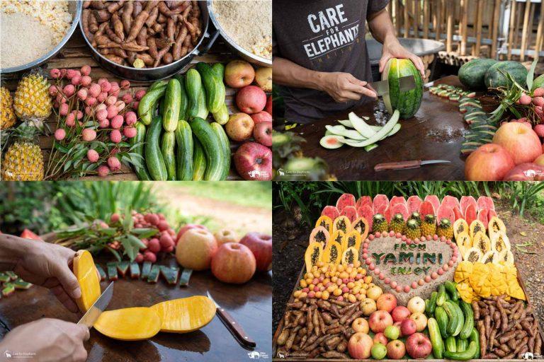 Making_Elephant_Fruit_Cakes_24
