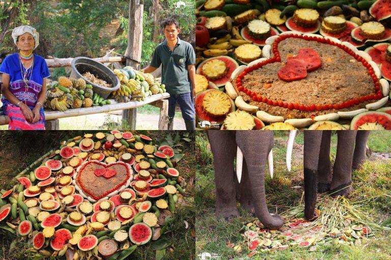 Making_Elephant_Fruit_Cakes_27