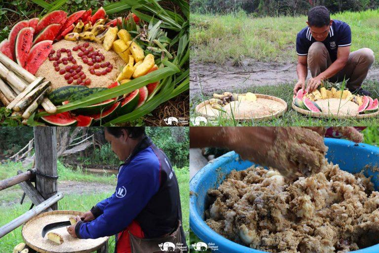 Making_Elephant_Fruit_Cakes_28