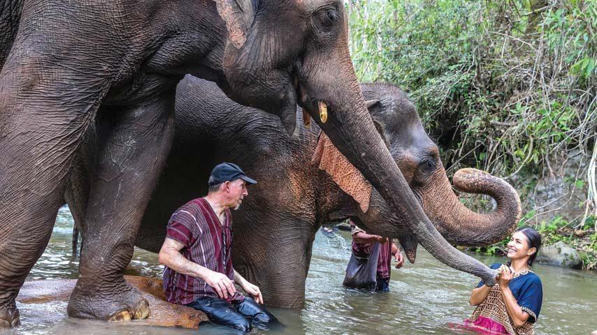 Ethical elephant sanctuary Chiang Mai Thailand